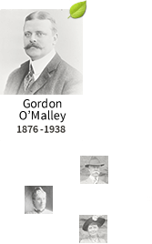 Tree for Gordon O'Malley, 1876-1938